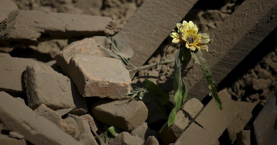 27.abr.2015 - Uma flor surge no meio dos escombros de uma casa que desabou após o terremoto de sábado (25) em Bhaktapur, Nepal. Um forte terremoto de magnitude 7,8 na escala Richter destruiu cidades do país e deixou milhares de mortos