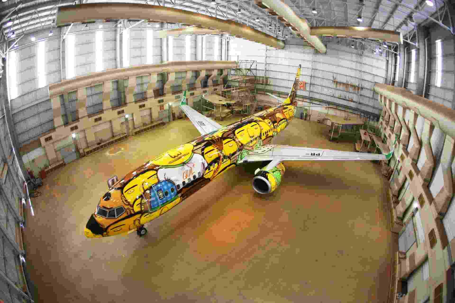 A fuselagem do Boeing 737 foi decorada com pintura dos gêmeos Otávio e Gustavo Pandolfo; o jato foi usado pela seleção brasileira durante a Copa do Mundo de 2014 - Divulgação/Gol