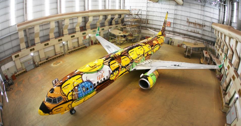 A fuselagem do Boeing 737 foi decorada com pintura dos gêmeos Otávio e Gustavo Pandolfo; o jato foi usado pela seleção brasileira durante a Copa do Mundo de 2014