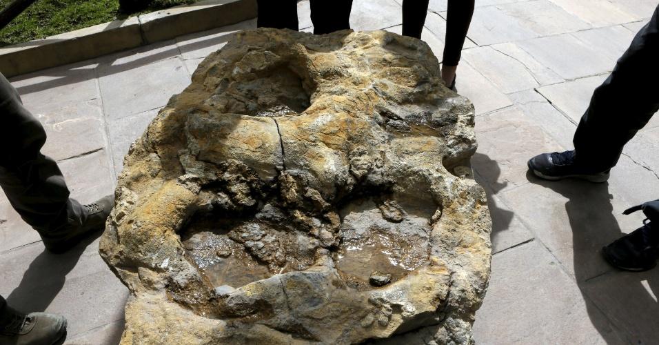 29.abr.2015 - Um pedaço de rocha vulcânica com pegada de dinossauro é apresentada no Parque Cretáceo de Cal Orcko, localizado na pedreira Fancesa em Sucre, na Bolívia. Frequentes deslizamentos de terra no sítio arqueológico têm revelado novas trilhas de dinossauros, com algumas pegadas pertencentes a novas espécies, de acordo com pesquisadores locais