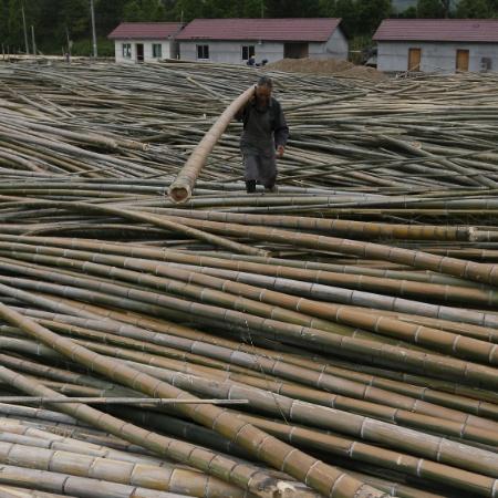 Homem é visto em fábrica de processamento de bambus em Longyou, na China - Por Gabriel Crossley e Kevin Yao