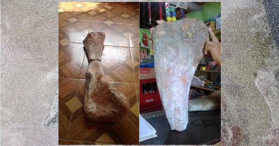 8.mai.2015 - Fóssil de dinossauro herbívoro foi encontrado por um pescador na região costeira do município de Cajapió, noroeste do Maranhão, no último domingo (3). Segundo a UFMA (Universidade Federal do Maranhão), indicações prévias mostram que se trata de um animal subadulto ou uma espécie de pequeno porte, medindo entre 10 e 15 metros. Foi detectado a parte dorsal do animal, incluindo o úmero e parte da caixa torácica. É a primeira vez que um fóssil é encontrado na localidade de Cajapió e, agora, o trabalho está voltado para determinar a idade do material, que provavelmente corresponde às mesmas rochas antigas existentes na região de Alcântara, que têm entre 95 milhões e 99 milhões de anos. O material será analisado pela UFMA em conjunto com a UFRJ (Universidade Federal do Rio de Janeiro) e o Centro de Pesquisa de História Natural e Arqueologia do Maranhão para identificar a espécie do animal pré-histórico