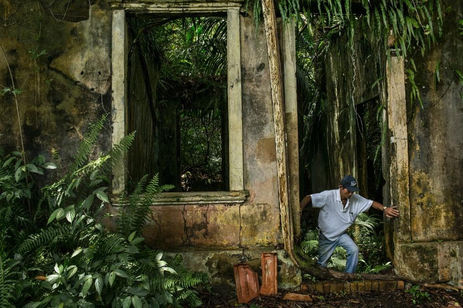 Shigeru Nakayama caminha pelas ruínas de Airão Velho, na Amazônia
