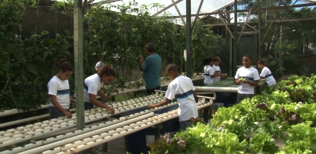Escola no Rio capta água da chuva para economizar e regar horta de alunos - Taís Vilela/UOL