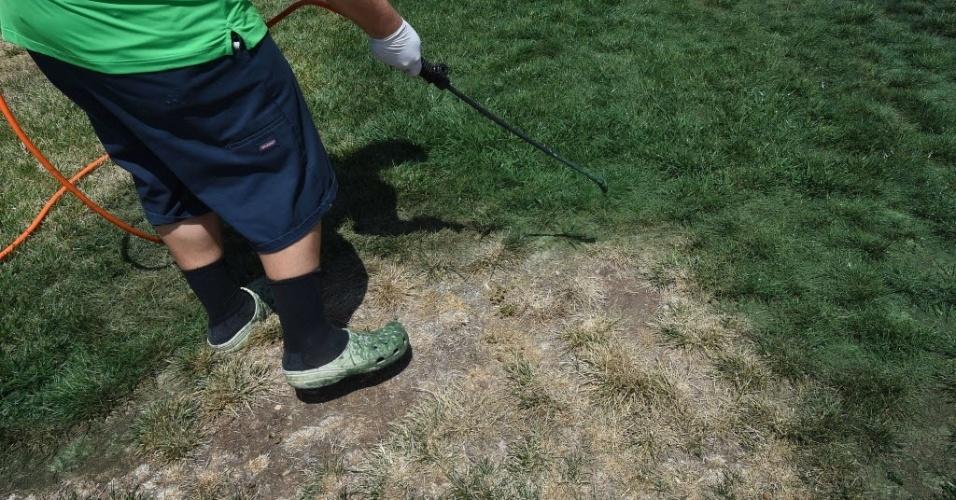 Cy Bodden, da empresa LawnLift, passa tinta para realçar a cor verde da grama. O governo da Califórnia anunciou recentemente restrições radicais de água em todo o estado pela primeira vez na história para combater a seca na região, a pior desde que os registros começaram
