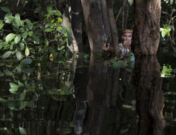 Cientistas propõem transformar a biodiversidade da Amazônia em tecnologia