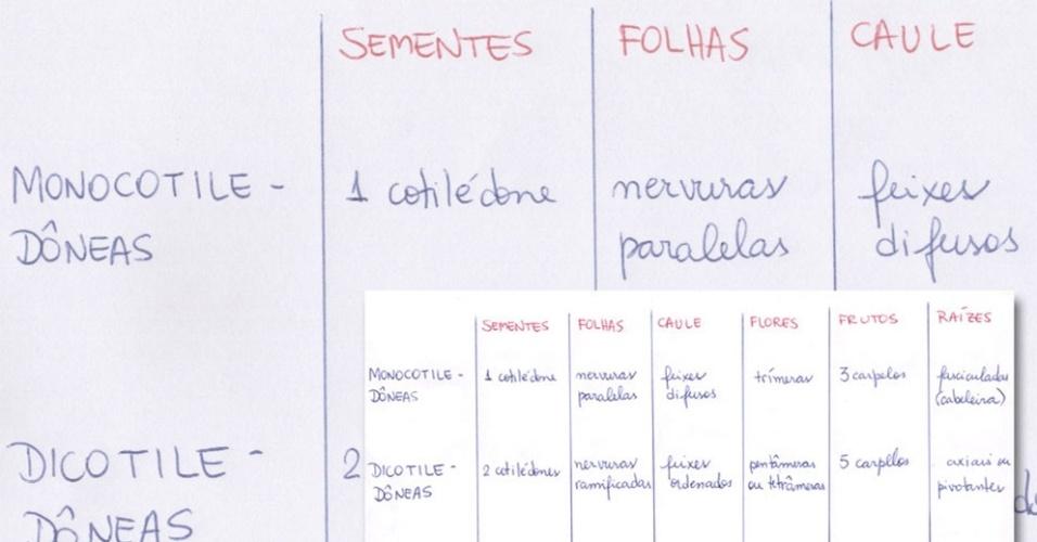 Anotação - tabelas