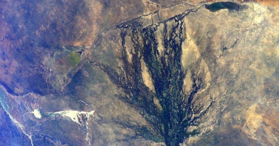 25.mai.2015 - A astronauta da ESA (agência espacial europeia) Samantha Cristoforetti, que está a bordo da ISS (Estação Espacial Internacional), postou nesta segunda-feira (25) na sua conta no Twitter uma imagem feita do espaço do rio Okavango, na África austral, que faz fronteira natural entre Angola e Namíbia. Nesta segunda, se comemora o Dia da África