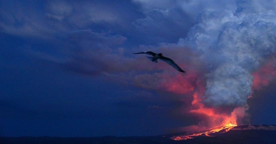 25.mai.2015 - Vulcão Lobo entra em erupção no Parque Nacional de Galápagos, em Ilha Isabela, Galápagos, no Equador