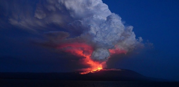 Diego Paredes/Parque Nacional Galápagos/EFE