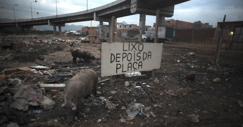 29.mai.2015 - Os pescadores que têm como base o Complexo da Maré, na zona norte do Rio de Janeiro, reclamam da poluição e do assoreamento da baía da Guanabara. Ao lado da colônia de pescadores, localizada embaixo de um viaduto, há um lixão em que porcos, garças, urubus, ratos e gatos convivem