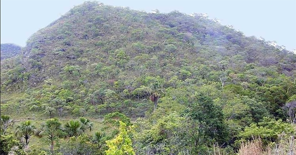 Cerrado - ecossistemas brasileiros