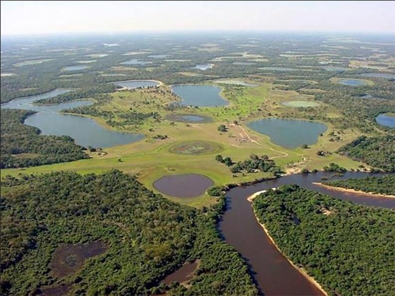 Pantanal - ecossistemas brasileiros