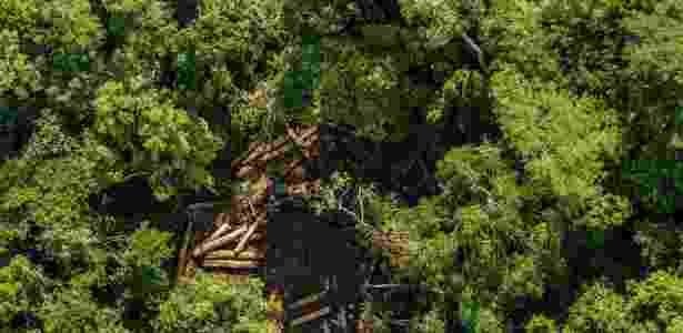 Desmatamento de floresta em Uruará (PA) - Fábio Nascimento - 9.jun.2015 /Greenpeace