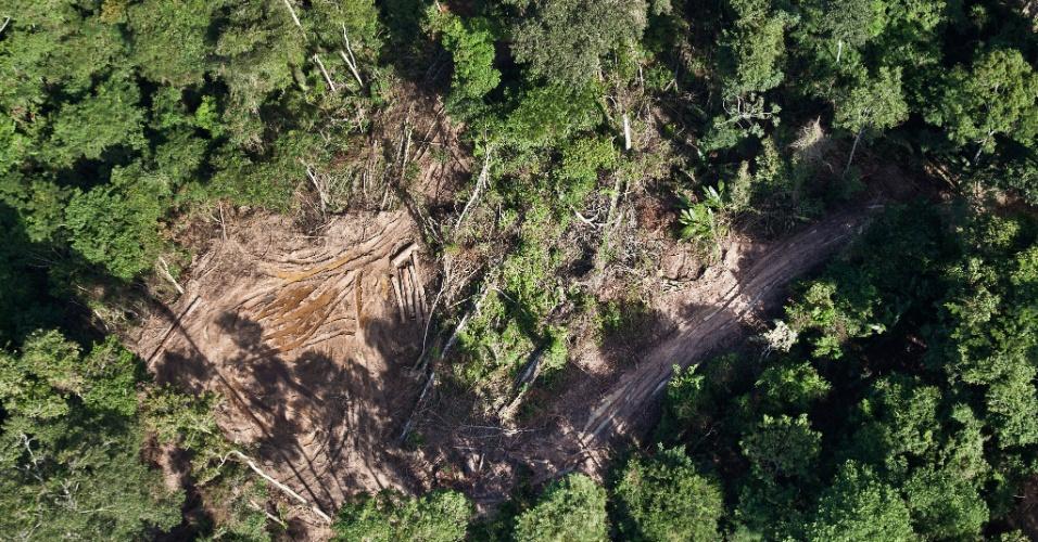 9.jun.2015 - Uma investigação do Greenpeace sobre extração ilegal de madeira flagrou vias abertas na terra indígena Cachoeira Seca, no Pará. Essas vias são provavelmente usadas para o transporte de madeira ilegal na área. Diversas investigações da organização revelaram desde maio de 2014 como madeireiros da Amazônia exploram as falhas do sistema de controle da atividade para lavar a madeira ilegal com documentos oficiais. A imagem foi feita em 5 de junho de 2015