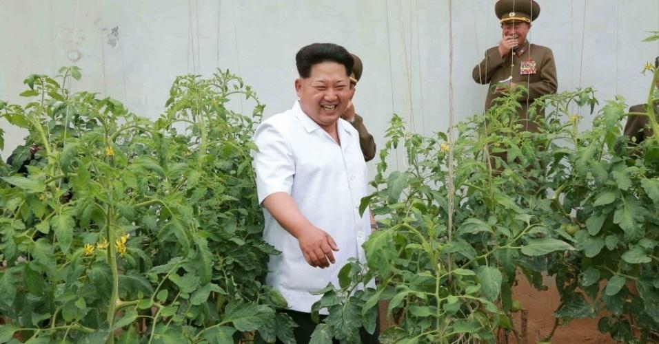 13.jun.2015 - Ditador norte-coreano Kim Jong-un inspeciona a academia de artilharia antiaérea em foto sem data liberada pela Agência de Notícias da Coreia do Norte