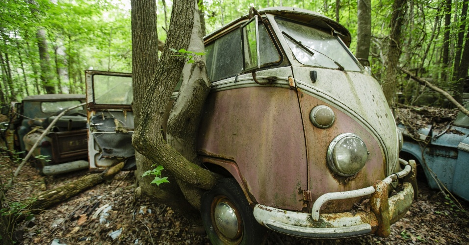 16.jun.2015 - Árvore em simbiose com uma velha Kombi, da Volkswagen, em um ferro-velho em White, na Geórgia, nos EUA. O local funciona como cemitério para automóveis, mas também como paraíso para fotógrafos e amantes de carros antigos