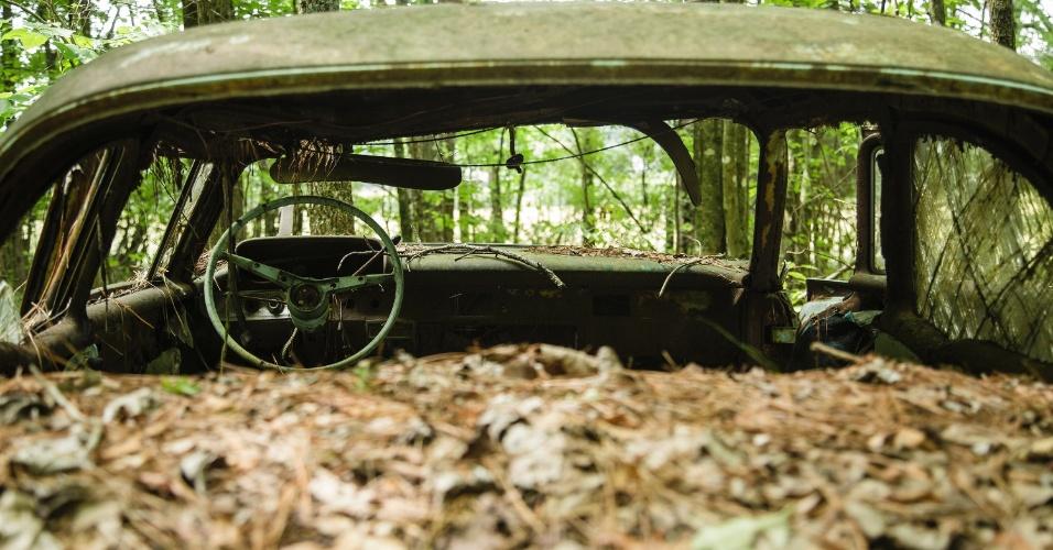 16.jun.2015 - Folhas cobrem carro antigo em ferro-velho na Geórgia (EUA). O local funciona como cemitério para automóveis, mas também como paraíso para fotógrafos e amantes de carros antigos