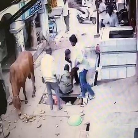 Vaca joga homem em buraco na Índia e come alimentos que ele carregava - Reprodução