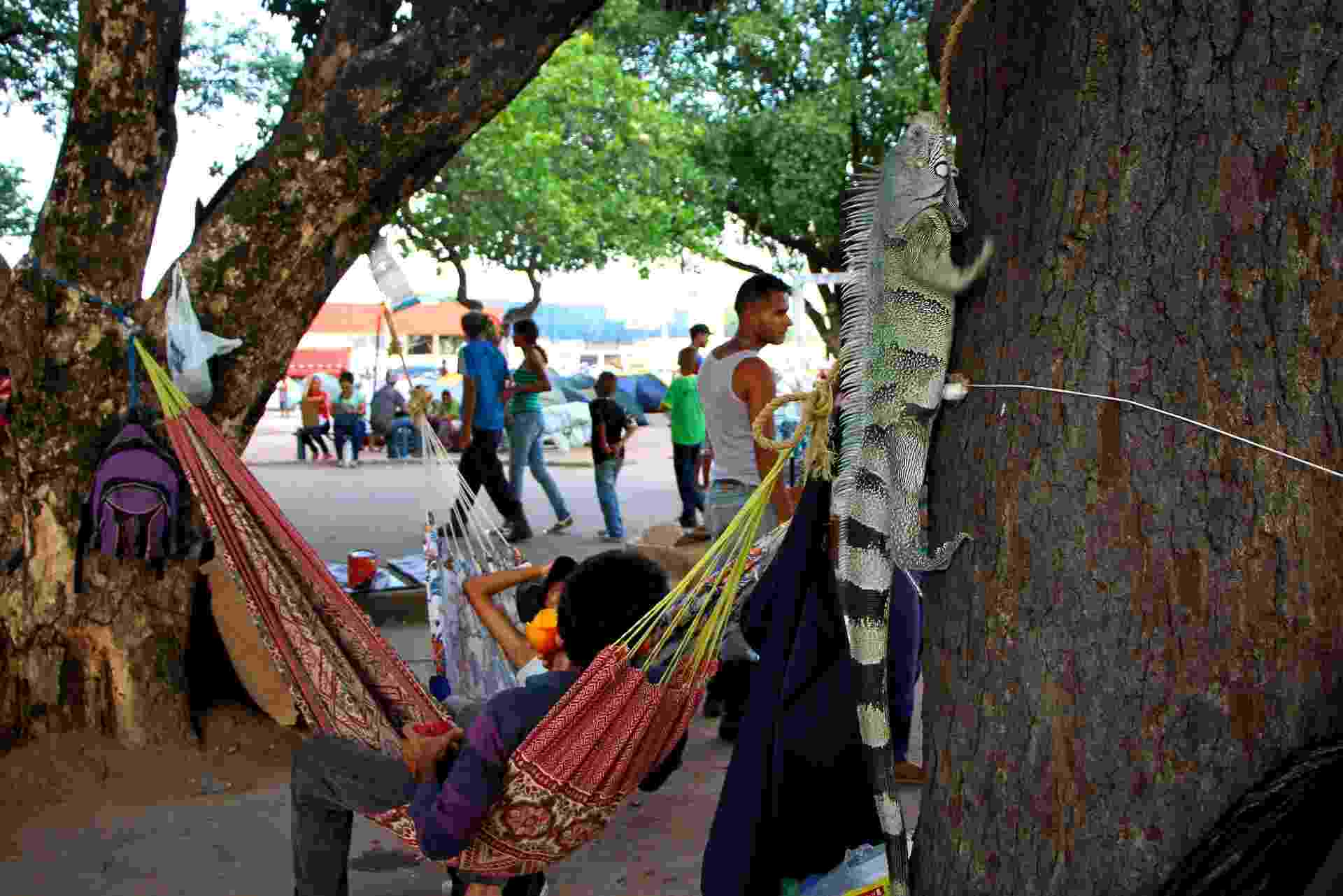 Cerca de mil venezuelanos vivem na Praça Simón Bolívar, em Boa Vista. Eles dormem em barracas de camping, em redes e até mesmo em caixas de papelão no chão - EDMAR BARROS/FUTURA PRESS/ESTADÃO CONTEÚDO