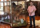 Como Brasil transformou animal sagrado de marajá indiano em revolução genética e mercado bilionário - Diego Padgurschi/BBC