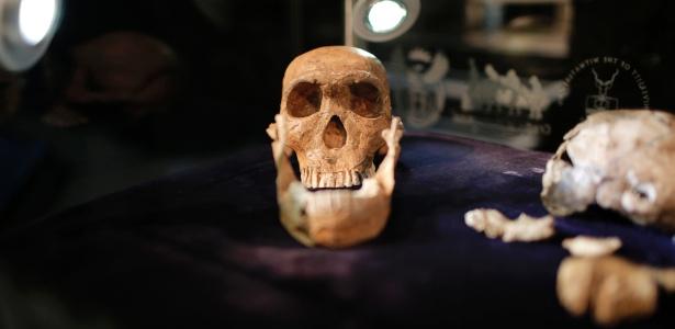 Crânio de Homo naledi, encontrado em sítio arqueológico localizado próximo a Johannesburgo, na África do Sul, sugere que estes hominídeos primitivos coexistiram com homens modernos