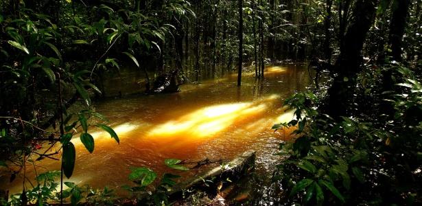 Comunidade Vila Nova, que fica nos fundos da empresa Hydro, tem sofrido com os efeitos dos resíduos que foram jogados nos igarapés e rios próximos a comunidade - Raimundo Paccó/FramePhoto/Estadão Conteúdo