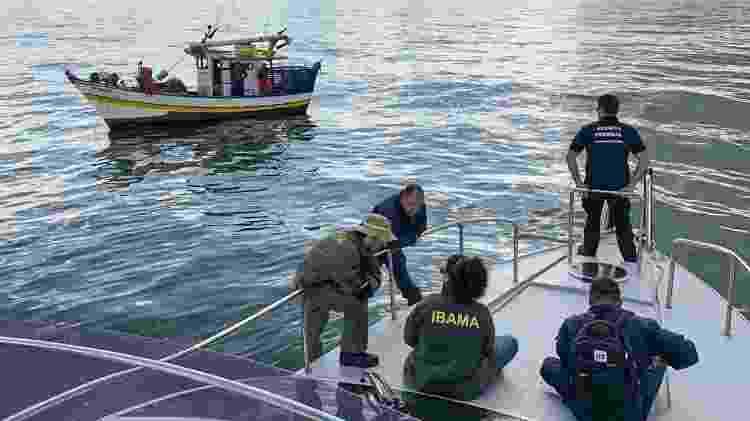 Ibama tem a atribuição de conduzir processo administrativo contra os responsáveis pelo incidente, multando-os e exigindo a reparação dos danos - Ibama - Ibama
