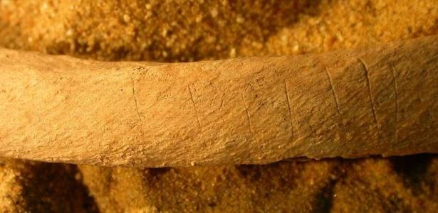 Ossos com marcas de faca foram encontrados por arqueólogos na região de Wharram Percy, na Inglaterra