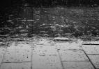 O que produz aquele cheiro gostoso de chuva? - Pixabay