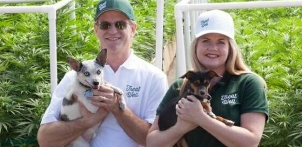 Alison Ettel e seu sócio Harry Rose fazem produtos médicos a base de maconha para seres humanos e animais - Alison Ettel/Arquivo pessoal
