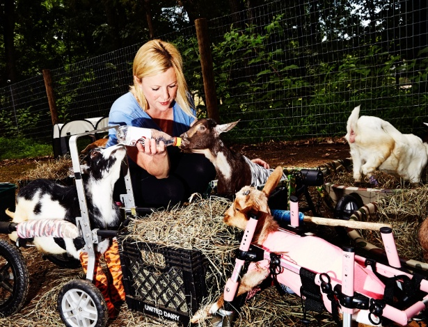 Leanne Lauricella, que possui um santuário de cabras em Nova Jersey, EUA - Amy Lombard/The New York Times