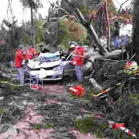 Carro em que Miraci Fernandes estava foi atingido por árvore durante o ciclone - Arquivo pessoal