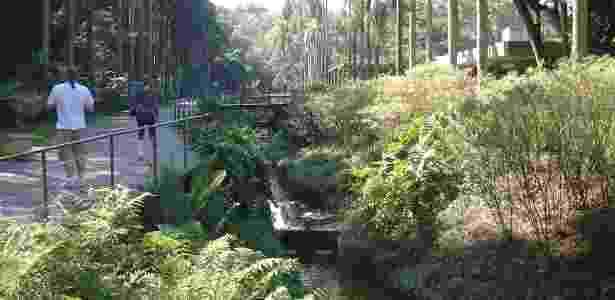 Jardim Botânico/Divulgação