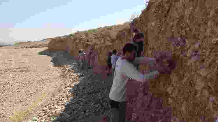 Pesquisadores usaram martelinhos e colheres de pedreiro durante as escavações - Divulgação