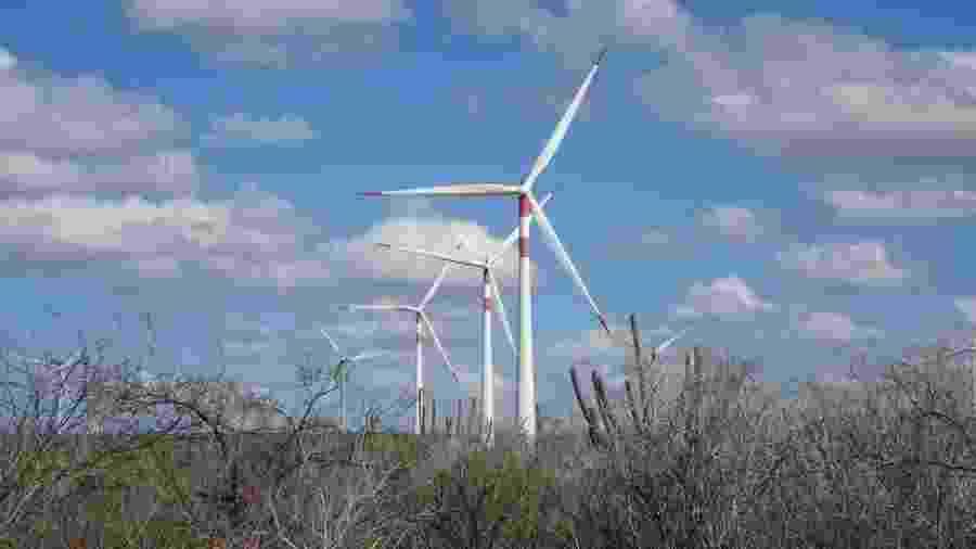 Gerar energia renovável mediante a força dos ventos é uma importante estratégia para que o Brasil cumpra suas metas de desenvolvimento sustentável - Marilia Barros