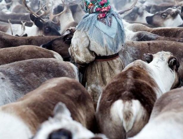 Mulher cuida de rebanho de renas na região da Sibéria (Rússia) - Oded Wagenstein / BBC