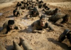 Análise: A próxima guerra em Gaza está fermentando. Veja como detê-la (Foto: Ibraheem Abu Mustafa/Reuters)