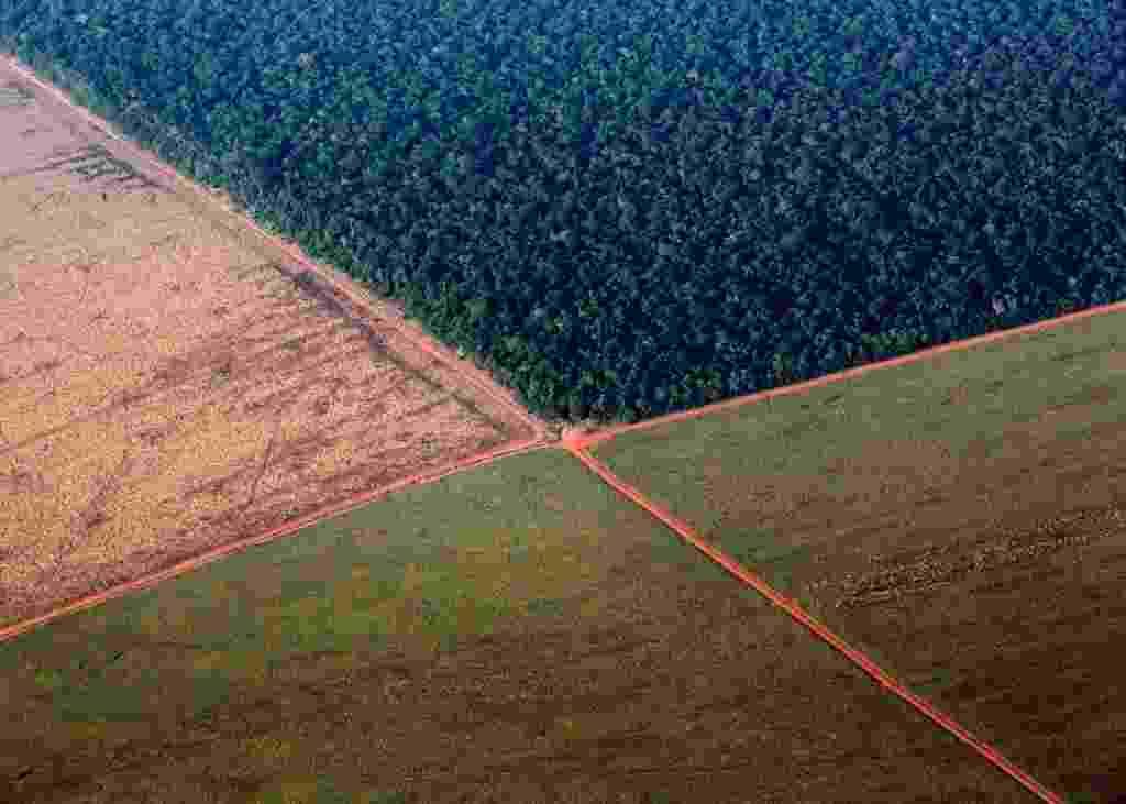 5.out.2015 - Foto aérea mostra a floresta Amazônica (na parte superior) fazendo fronteira com terras desmatadas para o plantio de soja, em Mato Grosso. A foto foi tirada neste domingo (4) e divulgada hoje. O Brasil produzirá um recorde de 97,8 milhões de toneladas de soja em 2015/16, um aumento de 3,2% em comparação com 2014/15 - Paulo Whitaker/ Reuters