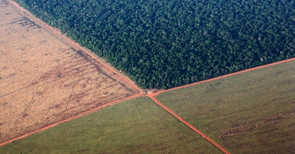 5.out.2015 - Foto aérea mostra a floresta Amazônica (na parte superior) fazendo fronteira com terras desmatadas para o plantio de soja, em Mato Grosso. A foto foi tirada neste domingo (4) e divulgada hoje. O Brasil produzirá um recorde de 97,8 milhões de toneladas de soja em 2015/16, um aumento de 3,2% em comparação com 2014/15