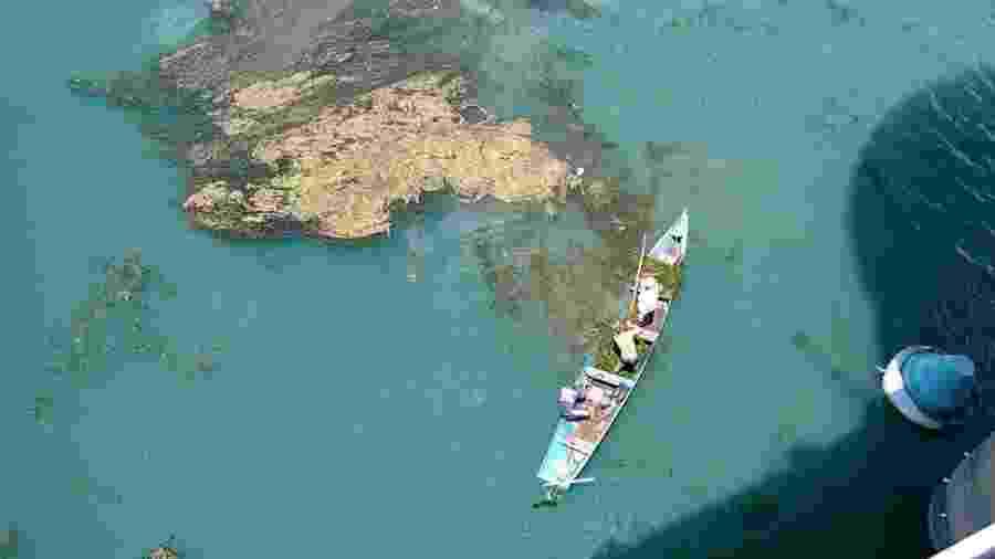 A proliferação de plantas aquáticas tem prejudicado o rio São Francisco, no Nordeste - Companhia de Saneamento de Alagoas
