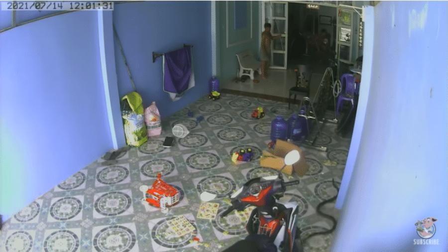 Cobra arisca invade casa e quase ataca criança no Vietnã - Reprodução/You Tube