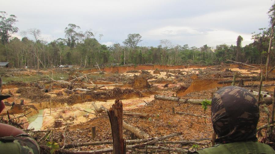 Área desmatada na região do rio Mucajaí, em Roraima - CGIIRC/Funai