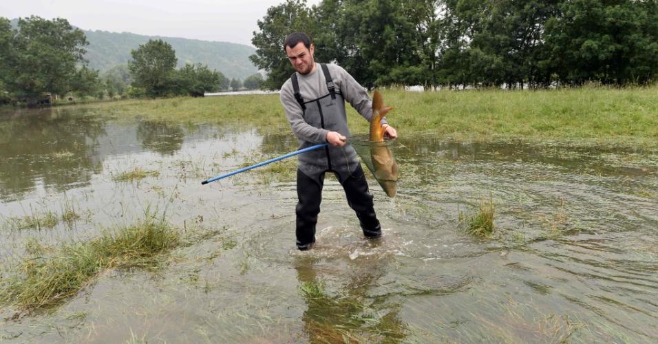 5.jun.2016 - O francês Alexandre Thenard recolhe uma carpa no quintal de sua fazenda, na cidade de Saint-Aubin-les-Elbeuf, para devolver ao rio Sena. Vários peixes foram levados para o campo da fazenda de Thenard após inundações do rio que corta a França