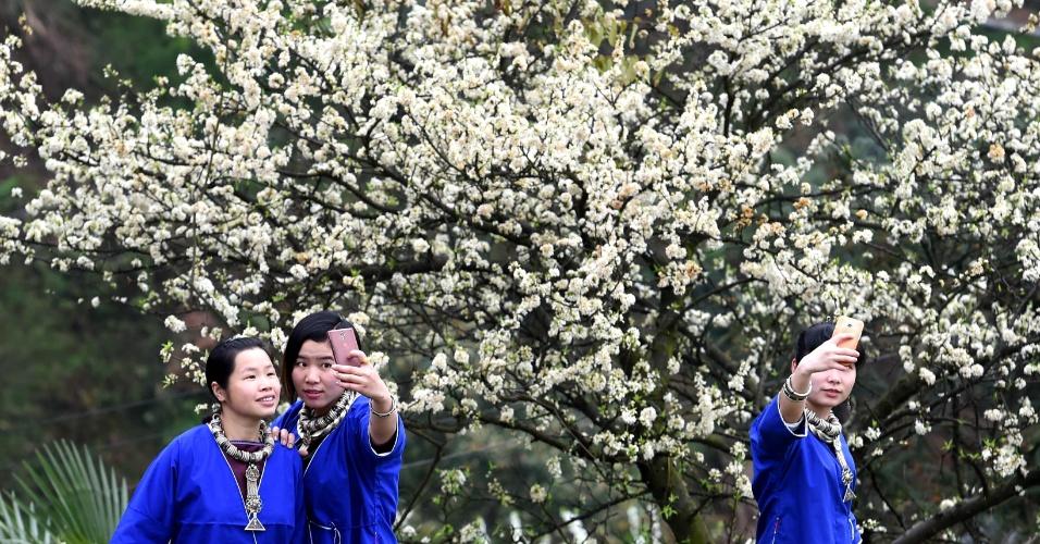 8.mar.2016 - Meninas tiram selfies diante de pés de ameixa em plena floração, na região autônoma de Guangxi Zhuang, no sul da China. Cerca de 2.000 pés de ameixa se encontram totalmente floridos na região nesta época do ano