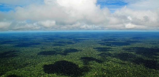 Vista aérea da floresta Amazônica; conter desmatamento é desafio para o país - Wikimedia Commons