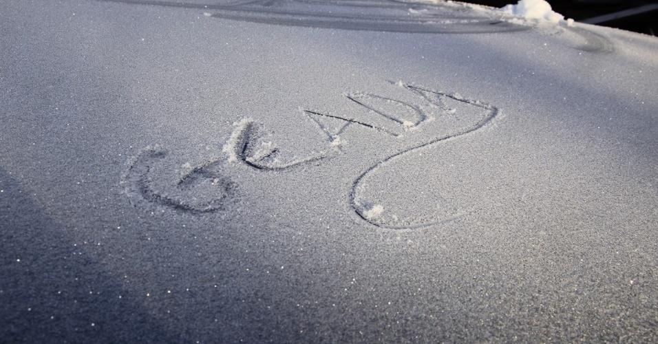 14.jun.2018 - Com a temperatura abaixo de zero, o município de São Joaquim, no alto da Serra Catarinense, amanheceu coberto de gelo