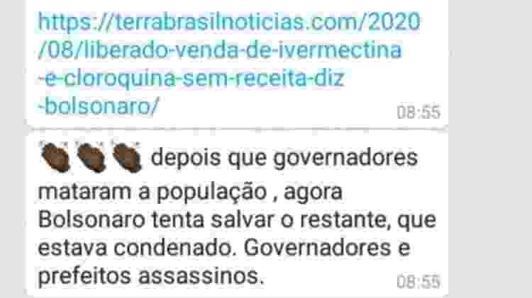 Bolsonaro 3 - Reprodução - Reprodução