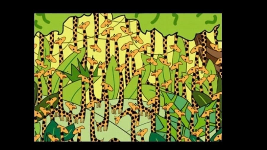Consegue encontrar a cobra sorrateira perdida entre as girafas? - Playbuzz