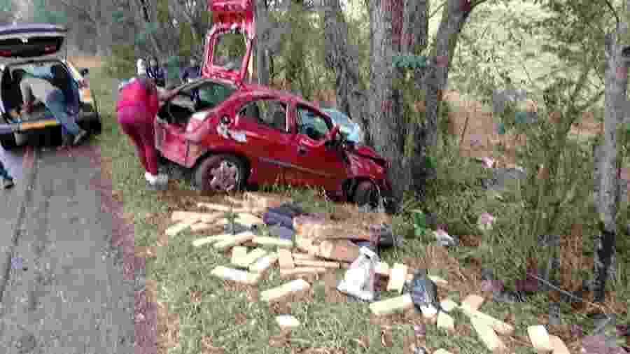 Motorista não obedeceu ordem da polícia para parar e acabou se chocando contra árvore, diz polícia - Divulgação/Polícia Rodoviária do Paraná